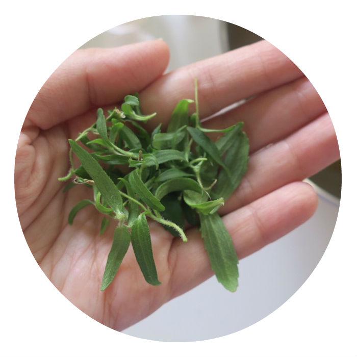 https://robert-parker-michelin-sg-prod.s3.amazonaws.com/media/image/2016/08/25/9dea26b188f14d7ebd2cb3830e17f8d9_stevia.jpg