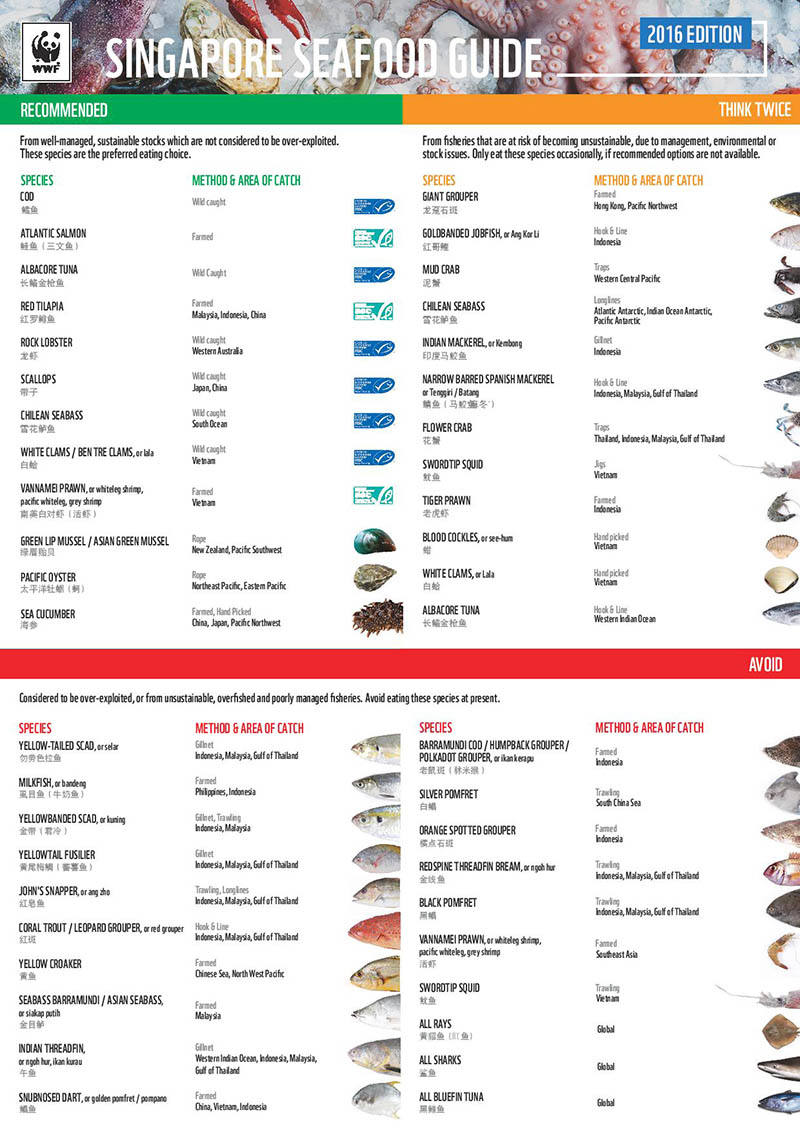 The full selection of the WWF Singapore Seafood Guide. <a href='http://d2ouvy59p0dg6k.cloudfront.net/downloads/wwf_seafoodguide2016.pdf'>Download</a> the guide here.