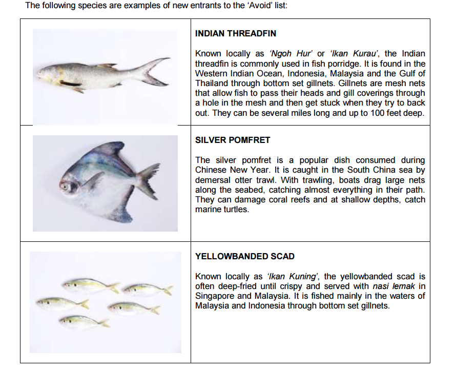 Common fish species in the 'Avoid' category, and why they made the blacklist. Photo: WWF