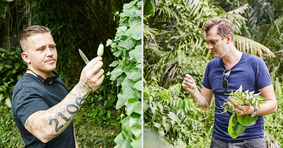 Left: Holland plucking wild cucumbers. Right: Lewis picking curry berries